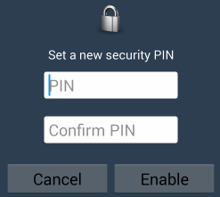 Pydio-Enable-PIN.png